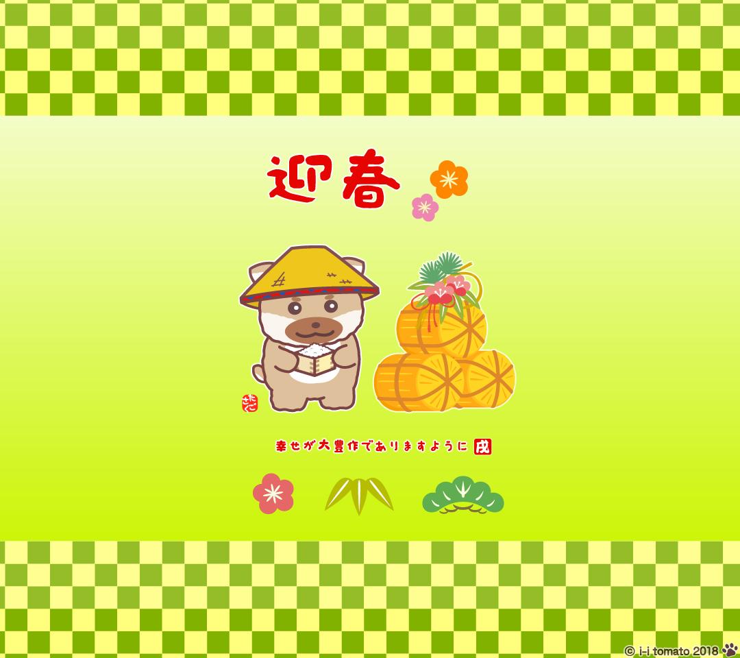 スマホ壁紙 豆柴 戌 犬